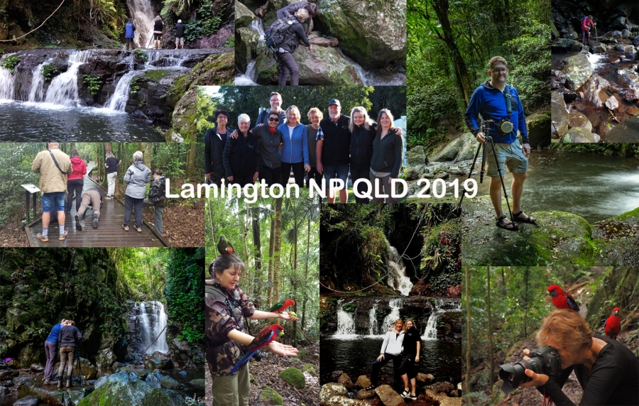Lamington National Park Workshop 2019