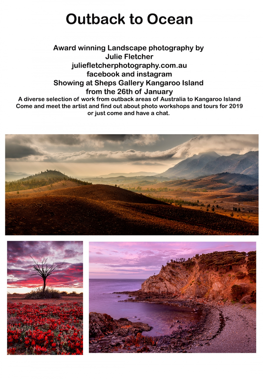 Exhibition at Sheps Gallery Kangaroo Island SA